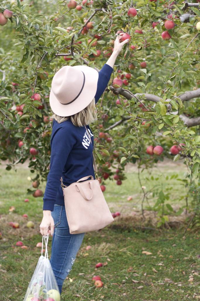 new york sweatshirt, white chuck taylors, felt hat, apple picking